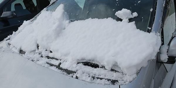フロントガラスを塞ぐ雪